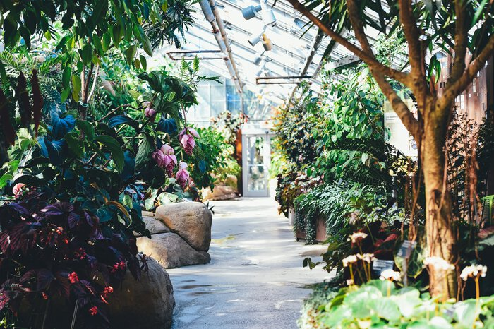 A photo of a greenhouse.