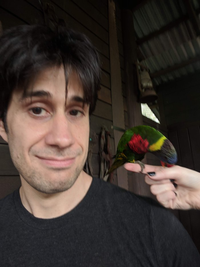 A multicolored lory on Pablo's shoulder. Click for full-size image.