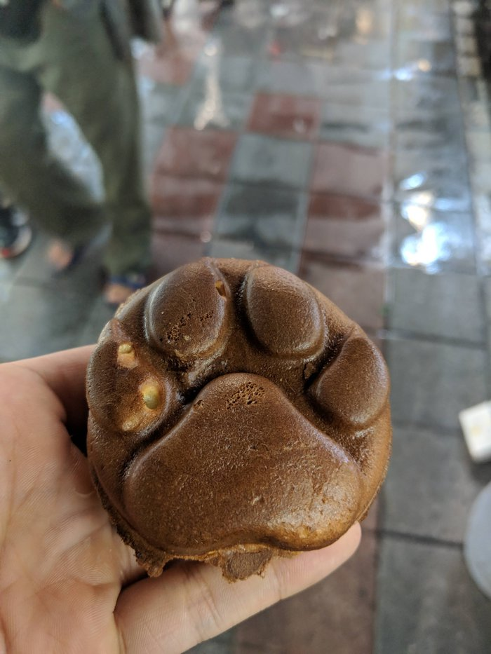 A tiny cake shaped like a dog paw. Click for full-size image.